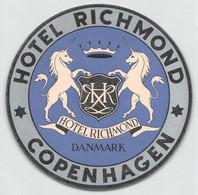 "09317 ""HOTEL RICHMOND - COPENHAGEN - DANMARK"" ETICH. ORIG. PUBBL. HOTEL - Hotel Labels"