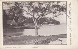 Samoa, Greetings From Apia, Savii Village On Water C1900s Vintage Postcard - Samoa