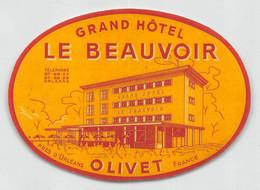 "09320 ""GRAND HOTEL LE BEAUVOIR - OLIVET - PRES D'ORLEANS - FRANCE"" ETICH. ORIG. PUBBL. HOTEL - Hotel Labels"