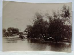 Belgique. Liège. Square D'Avroy. 1905. 8x11 Cm - Plaatsen