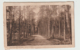 (A314) Breda Omstreken Mastbosch Kaart Uit 1928 Gelopen - Breda