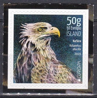 Island Iceland 2019 Tiere Fauna Animals Vögel Birds Oiseaux Aves Uccelli Adler Eagles Seeadler Raubvögel, Mi. 1586 ** - Nuovi