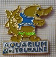 REQUIN AQUARIUM DE TOURAINE à AMBOISE Dpt 37 INDRE & LOIRE - Tiere