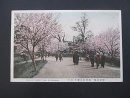 Japan 1914 AK View Of Cherry Tree Miyukisaka Mit 4 Sondermarken Mit Violettem Sonderstempel - Covers & Documents
