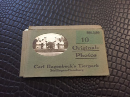 ALLEMAGNE - 10 ORIGINAL PHOTOS - CARL HAGENBECK'S TIERPARK - STELLINGEN HAMBURG - Non Classés