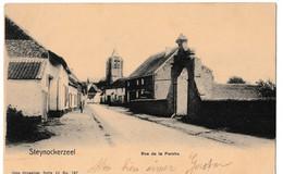 Steynockerzeel - Rue De La Perche - Steenokkerzeel