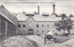 Westmalle, Cisterciënzer Abdij, Brouwerij, Brasserie (pk74289) - Malle