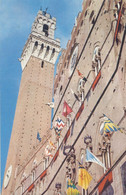 SIENA - SIENNE : Palazzo Pubblico (1956) - Bandiere Contrade - Siena