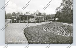 4740 OELDE, Stadtgarten, Fasanengehege, 1964 - Warendorf