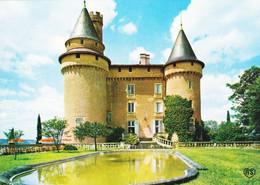46 Cahors Le Château De Mercues Aux Environs De Cahors (carte Vierge) - Cahors