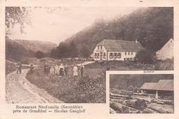 Environs De GRAUFTHAL (67-Bas-Rhin)  Restaurant Neufmoulin Neumühle-Moulin-Scierie-BOIS - VOIR 2 SCANS - - Other Municipalities