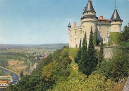 46 Environs De Cahors Château De Mercuès (carte Vierge) - Cahors