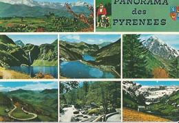 PAnorama Des Pyrénées - Zonder Classificatie