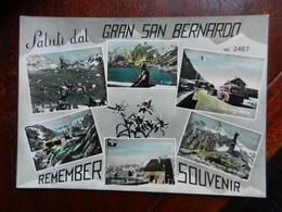 20082) SALUTI DAL GRAN S. BERNARDO VEDUTE NON VIAGGIATA - Zonder Classificatie