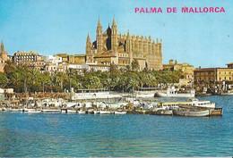 Palma De Mallorca - Partial View Of The Bay And Cathedral - Palma De Mallorca