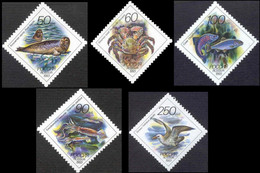 1993Russia323-327Fauna Of The Pacific Region Of Russia - Meereswelt