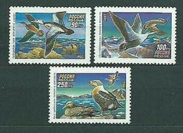 1993Russia320-322Ducks - Entenvögel