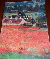 Aspetti Di Algebra 1. Ambito Generale Di M. Scovenna - A Moretti - Matematica E Fisica