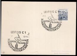 Deutschland - Sonderstempel - 1962 - X Championnats D'Europe De Natation - A1RR2 - Zwemmen