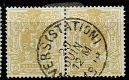 28 Paire Obl  Nuances ! - 1869-1888 Lying Lion