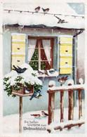 DC3384 - Ak Weihnachten Verschneites Haus Vögel Schöne Motivkarte - Other