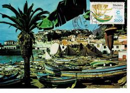 CARTE MAXIMUM PORTUGAL MADEIRA 1980 - Non Classificati