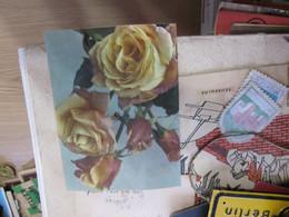 The Singing Postcards Colorvox Holics - Cartoline Con Meccanismi