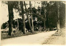 231120A - PHOTO Années 1920 - TANZANIE ZANZIBAR Habitations Typiques - Tanzania