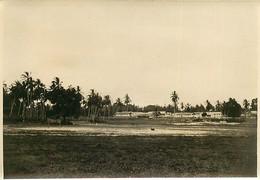 231120A - PHOTO Années 1920 - TANZANIE ZANZIBAR Paysage - Tanzania