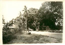 231120A - PHOTO Années 1920 - TANZANIE ZANZIBAR Maison Nature Palmier - Tanzania