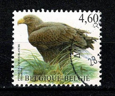 Belg. 2009 OBP/COB 3871, Yv 3852 Zeearend / Pyrargue à Queue Blanche (2 Scans) - Gebraucht