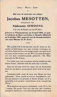 Vliermaalroot, Hasselt: 1957, Jacobus Mesotten, Serdons - Devotion Images