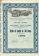 Titre Ancien - Tannerie Lang Et Compagnie - Société Anonyme - Titre De 1929 - - Textil