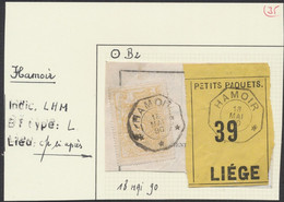 """Chemin De Fer - TR12 Sur Frag. """"Petits Paquets 39"""" + Cachet Télégraphique """"Hamoir"""" (1890) > Liège - Fragmentos & Cartas"""
