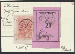 """Chemin De Fer - TR11 Sur Frag. """"Petits Paquets 20"""" + Cachet Télégraphique """"Melreux"""" (1887) > Liège / Tarif Grande Vitess - Fragmentos & Cartas"""