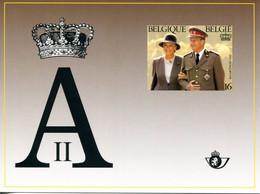 18195091 BE 19951115; Couple Royal, Albert 2 Et Paola; Tiré à Part 105 X140, Fllet Luxe, Cob LX84 N°2621 - Feuillets De Luxe