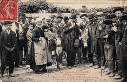 Thematiques 85 Vendée Au Marais Vendéens Meurs Si Drole Que Tché Bourins Anes Cachet 1907 - Other Municipalities