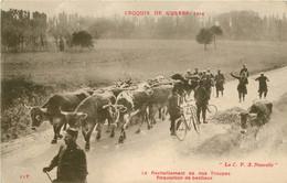 MILITARIA CROQUIS DE GUERRE 1914 LE RAVITAILLEMENT DE NOS TROUPES REQUISITION DE BESTIAUX - War 1914-18