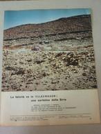# ADVERTISING PUBBLICITA VOLKSWAGEN BEETLE UNA CARTOLINA DALLA SIRIA   - 1966 - Werbung