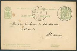 E.P. Carte 5c. Allégorie Obl. Dc MERSCH 29-5 1893 Vers Birtrange- 16531 - Interi Postali