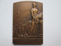 Medaille En Bronze Ville De Paris Concours International De Musique Mai 1912 Graveur J.P LEGASTELOIS +Insigne - Professionali / Di Società