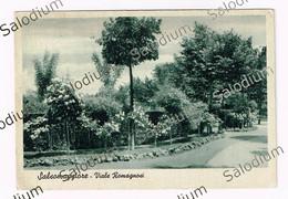 SALSOMAGGIORE TERME Viale Romagnini - Parma