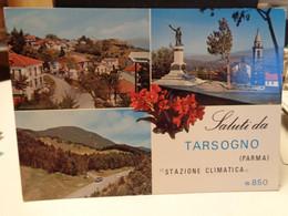 Cartolina Saluti Da Tarsogno Prov Parma Stazione Climatica Vedutine 1969 - Parma
