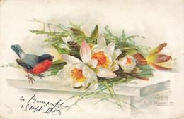 C.KLEIN -  Fleurs De Nénuphar Et Rouge Gorge - Klein, Catharina