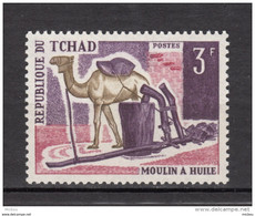 Tchad, Chad, Moulin à Huile, Oil Mill, Chameau, Camel, Alimentation - Mulini