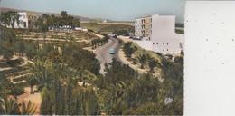 AGADIR  -  Le Boulevard De L'Hopital  -  CPSM PF  - - Agadir