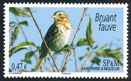 ST-PIERRE ET MIQUELON 2009 - Yv. 939 **  - Oiseau Bruant Fauve  ..Réf.SPM12501 - Unused Stamps