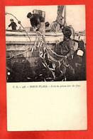 T.G. - 598 . BERCK-PLAGE - Levée Du Poisson Hors Des Filets . - Berck