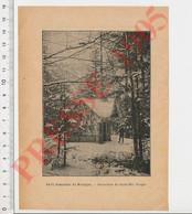 Photo Presse 1905 Forêt Domaniale De Mortagne (Vosges) CHV49 - Unclassified