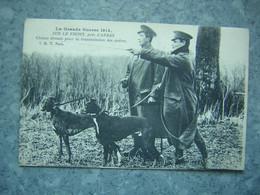 PRES D' ARRAS - CHIENS DRESSES POUR LA TRANSMISSION DES ORDRES - War 1914-18
